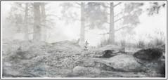 December (10 MIX) Tags: fox snow forrest luanesworld wood white virual secondlife sl metaverse texture frame