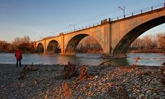 Frio ocaso (pascual 53) Tags: ocaso piedras puente raíces ríoebro 1635mm eos5ds canon largaexposición friocalido