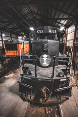 IC 8733 - Monticello, Illinois (backlitkid) Tags: ic8733 freight trains railroading railfanning indoors shops gp museum train emd