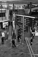 Which way? (Christoph Goeth) Tags: kloten zurich switzerland monochrome group street airport vertical europe westerneurope swissculture transportation largegroupofpeople crowd railtransportation modeoftransport travel journey escalator