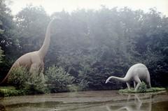 Saurierpark Kleinwelka_309 (Wayloncash) Tags: saurierpark kleinwelka deutschland germany 1994
