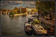 Paris_Seine_Île-de la Cité_Square du Vert-Galant_Pont Neuf_7e Arrondissement de Paris (ferdahejl) Tags: paris seine îledelacité squareduvertgalant pontneuf 7earrondissement dslr canondslr canoneos800d