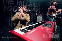 JH 20191130 Hill_billy_moonshinersDSC_3897WEB