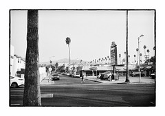 (The Peace Frog) Tags: losangeles leicam4p 35mmsummicronv4 hollywood sunsetblvd streetphotography analogue film bw
