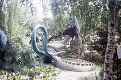 Saurierpark Kleinwelka_317 (Wayloncash) Tags: saurierpark kleinwelka deutschland germany 1994