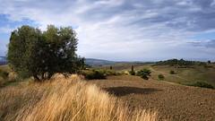 Bei Pienza (blichb) Tags: 2019 italien leica leicaq leicasummilux11728asph pienza reise reisefotografie toskana valdorcia blichb