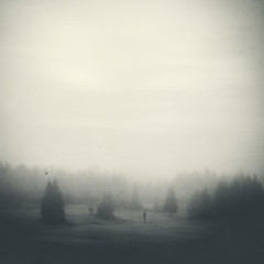 silent land (Dyrk.Wyst) Tags: wald fog forest hiking landscape meadow mood nature rain road traveldestination trees atmosphere blackandwhite conceptual creativephotography dark dreamy fineart minimalism monochrome mutedtones mystical peaceful oneperson silhouette