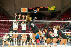 untitled-6 (boypig07) Tags: girls volleyball spandex shorts booty butt ass kneepads ponytail college womens sports voyeur short teen colorado state university thong