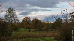 Hierschtowend um Zéiwelt bei Bartreng (08/11/2019 -03) (Cary Greisch) Tags: bertrange carygreisch herbst lux luxembourg zéiwelt automne