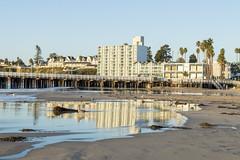 The Dream Inn and Santa Cruz Coastline (aaronrhawkins) Tags: dreaminn santacruz california beach hotel pier coastline sand reflection seagull seabird buildings morning sunrise dawn early vacation visit trip aaronhawkins