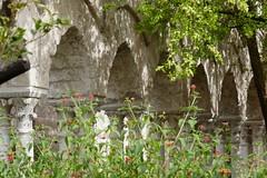 Cloître arabo-normand, St Jean des Ermites (1136), via Benedettini, Palerme, Sicile, Italie. (byb64) Tags: italien italy europa europe italia eu sicily palermo italie sicilia sicile palerme sizilien palermu church iglesia kirche chiesa 12th église ue normands xiie италия sangiovannideglieremiti rogerii сицилия палермо stylenormand arabonormand unescoworldheritagesite unesco cloister chiostro claustro kreuzgang cloître клуатр