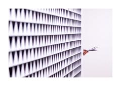 Hand and Cascando (realjv) Tags: 2019 xf50mmf2 art artgallery bridgetriley fuji fujifilm hand haywardgallery london minimalism opart pattern southbankcentre xpro2