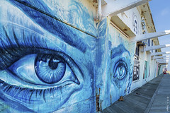 Old Blue Eyes, Asbury Park (rjseg1) Tags: streetart painting boardwalk asburypark newjersey