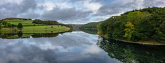 upside down (Phil-Gregory) Tags: nikon naturalphotography naturephotography nationalpark landscapes lightroom landscapephotography lake ladybower ladybowerreservoir reflection reflections sky scenicsnotjustlandscapes tokina tokina1120mmatx trees wideangle ultrawide panorama ngc