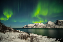 Northern Lights (Sònia CM) Tags: sea sky seascape senja nature night northerlights northernlights norway nocturna landscape longexposure largaexposicion llargaexposicio fuji fujifilm fujinon fujixt2 xt2 snow samyang12mm samyang