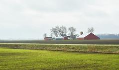 025146a  God Bless America (David G. Hoffman) Tags: fall fallcolors farm fields barn clouds