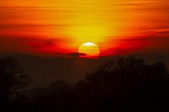 Sunset (Markus Branse) Tags: sunset billerbeckhamern 19102017 sun abendrot evening blue hour rood red rot roughe pink himmel sky heaven sonnenuntergang abendstimmung german germany deutsch deutschland niemcy münsterland dämmerung billerbeck hamern oktober rosendahl