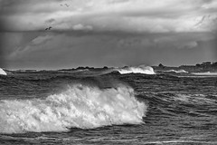 Storm Blowing In (Doug Santo) Tags: seascape pacificgrove landscapephotography storm blackandwhite