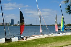 Sails (sander_sloots) Tags: foreshore perth swan river south sails sailboat boot zeilboot zeilen panasonic dctz90 lumix oever masts masten boats water