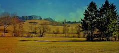 Germany , Rund um Leonberg, 76844/12157 (roba66) Tags: landschaft landscape paisaje nature natur naturalezza roba66 germany deutschland badenwürttemberg reisen travel explore voyages stadt leonberg agriculture field fields meadow wiese
