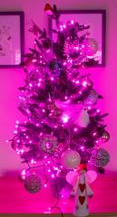 Felicity's Christmas Tree (Theutan1) Tags: christmastree christmas tree purple sparkle pink