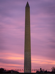 Washington Monument (Fret Spider) Tags: washingtondc dc capital usa thanksgiving architecture refection reflectingpool lincolnmemorial aposonnart2135 sonnarapo1352ze carlzeiss zeiss ze manuallens fujifilmgfx50s dusk dawn magical night longexposure mediumformat clouds wind pastel
