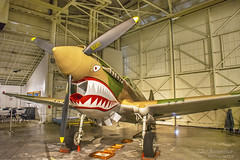 Curtiss P-40E Kittyhawk (Fighter) - Pacific Aviation Museum - Pearl Harbor (J.L. Ramsaur Photography) Tags: pearlharbornationalmemorial pearlharbor engagementtopeace pacificaviationmuseum curtissp40ewarhawk p40ekittyhawk curtissp40ekittyhawk bravery sacrifice loss heroism heroes usnavy worldwarii ww2 navy unitesstatesnavy remember memorial pacificwar wwiivalorinthepacificnationalmonument nationalparkservice curtissp40ekittyhawkfighter pearlharboraviationmuseum usnavalbase honoluluhawaii honolulu honoluluhi usaircraft americanaircraft fordisland uspacificfleet daythatwillliveininfamy jlrphotography nikond7200 nikon d7200 photography photo oahuhi honolulucounty hawaii 2019 engineerswithcameras islandsofhawaii photographyforgod hawaiianislands islandphotography screamofthephotographer jlramsaurphotography oahu tennesseephotographer oahuhawaii bucketlisttrip thegatheringplace 3rdlargesthawaiianisland 20thlargestislandintheunitedstates therainbowstate airplane aircraft militaryaircraft warbird royalcanadianairforce flyingtigers americanvolunteergroup avg raf