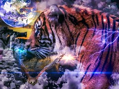 SHERRI AND THE SUMATRAN (eliewolfphotography) Tags: conservation conservationphotography creative cats tiger tigers animals art artistic artwork artphotography composite wildlife wildlifephotographer wildlifephotography nature naturelovers nikon naturephotography naturephotographer dream dreamscape surrealism animalart