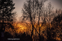Golden Fall Sunset (Photographybyjw) Tags: golden fall sunset sun reflections low clouds this autumn shot north carolina ©photographybyjw rural trees foliage country