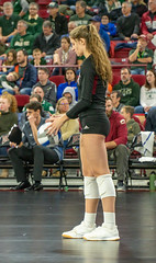 untitled-10 (boypig07) Tags: girls volleyball spandex shorts booty butt ass kneepads ponytail college womens sports voyeur short teen colorado state university thong