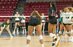 untitled-5 (boypig07) Tags: girls volleyball spandex shorts booty butt ass kneepads ponytail college womens sports voyeur short teen colorado state university thong