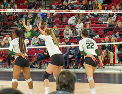 untitled-4 (boypig07) Tags: girls volleyball spandex shorts booty butt ass kneepads ponytail college womens sports voyeur short teen colorado state university thong