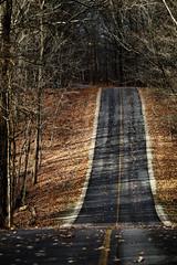 blendon woods (brown_theo) Tags: blendon woods metro park columbus ohio road trees autumn rural sunshine cold leaves blacktop twolane