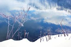 The First Snow (Anna M.J.) Tags: winterlandscape natur snow cold kalt forest tree water blue blau himmel sky landscape wandern canon austria oberlangkampfen travelphotography tyrol tour tourism