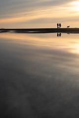 a november beach walk (beeldmark) Tags: hond zonsondergang water zee silhouette spiegeling katwijk sea sunset dog reflectie reflection zuidholland nederland pentax kp beeldmark hdpentaxda1685mmf3556eddcwr strand beach