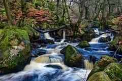 Padley Gorge, Peak District. (gavsidey) Tags: ngc d500 padley gorge burbage brook derbyshire peak district stream rocks trees nature landscape