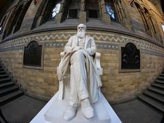 Charles Darwin (Matt C68) Tags: naturalhistorymuseum london hintzehall charlesdarwin darwin statue stairs architecture fisheye