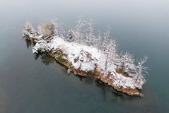 Snow Covered Island with Dead Trees (Duncan Rawlinson - Duncan.co) Tags: canada aerial 1000islands 2019 1000islandsontariocanada 1000islandsontario 1nwgqni7h2dmto18hnhbzhxoi4upxnyvrw ontario landscape cottage canadian ontariocanada duncanrawlinson dji duncanco lifeontheriver duncanrawlinsonphotography duncanrawlinsonphoto mavicpro2 firstsnowoftheseason1000islandsontariocanada winter summer snow cold beautiful snowy thousandislands stlawrence quadcopter photobyduncanrawlinson thousandislandsontariocanada shotwithadjimavicpro2 smallsnowcoveredislandwithdeadtrees snowcoveredislandwithdeadtrees house home nature river island islands outdoor deadtree region deadtrees drone httpsduncanco httpsduncancosnowcoveredislandwithdeadtrees tourism scenery rocks small seasonal shoreline scenic tourist shore timeless stlawrenceriver saintlawrence smallisland travel trees vacation tree water winter2019