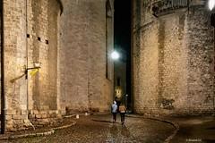 Girona Absis  Església de Sant Feliu (rossendgricasas) Tags: girona catalonia night light lightroom photoshop street urbanexploration