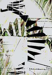 19-379 (lechecce) Tags: abstract 2019 sharingart art2019