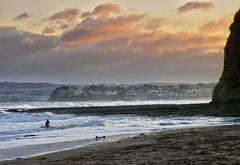 Winter Surfing - Torbay (pike head) Tags: winter surfing torbay devon uk southdevon england olymous 570uz