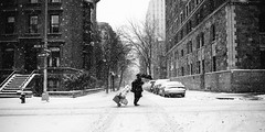 The Struggle (Airicsson) Tags: snow street urban nyc newyork city white winter cold snowstorm america usa cityscape storm brooklynheights brooklyn willow umbrella silhouette struggle epic gotham brownstone car