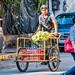 2019 - Mexico - Zihuatanejo - 5 - Pedalling