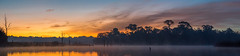 Morning Pano (gseloff) Tags: armandbayou dawn twilight landscape water reflection bayareapark boardwalk clouds panorama nature pasadena texas kayak gseloff