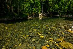 Swimming hole (agasfer) Tags: 2019 australia queensland capetribulation pentax k3 sigma1020 creek freshwater