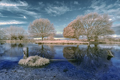 Early morning blues (David Feuerhelm) Tags: infrared landscape ir wideangle trees sky river water falsecolour reflections countryside blue sigma1020mmf456 nikon d90 suffolk stour england
