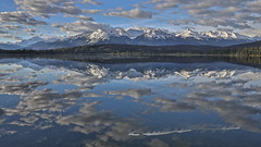 Cotton clouds reflecting in Pyramid Lake. (dfshunt44 (AKA Elkaholic)) Tags: clouds cloudy mountain rockys mt canada jasper pyramidlake lake water reflection cloud blue white gray trees skies sky snow snowtop