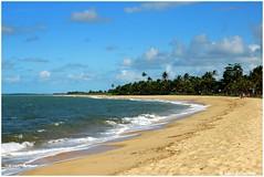 Praia de Caraiva - Bahia (Brasil) (gerard21081948) Tags: brésil brasil bahia caraiva portoseguro praia plage rivière rio sable palmiers cocotiers oceanatlantique paradis