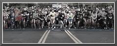 FolsomTurkeyTrot_2503 (bjarne.winkler) Tags: folsom turkey trot 2019 not everyone knows run right direction