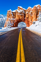 Roadtrip - Bryce, 2019 (Dino Sokocevic) Tags: zion nationalpark nationalparkservice nature landscape nikon ultrawide utah utahphotographers hoodoo orange bryce brycecanyon symmetry